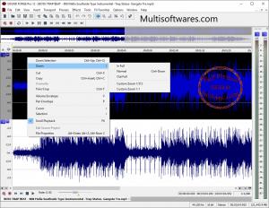 MAGIX Sound Forge Pro 12 Crack & Keygen Free Download [Latest]