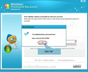 Windows Password Recovery Tool 6.4.3.1 Pro Crack Free Download